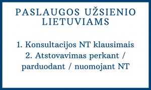 nt paslaugos gyvenantiems užsienyje_astasamulionyte.lt